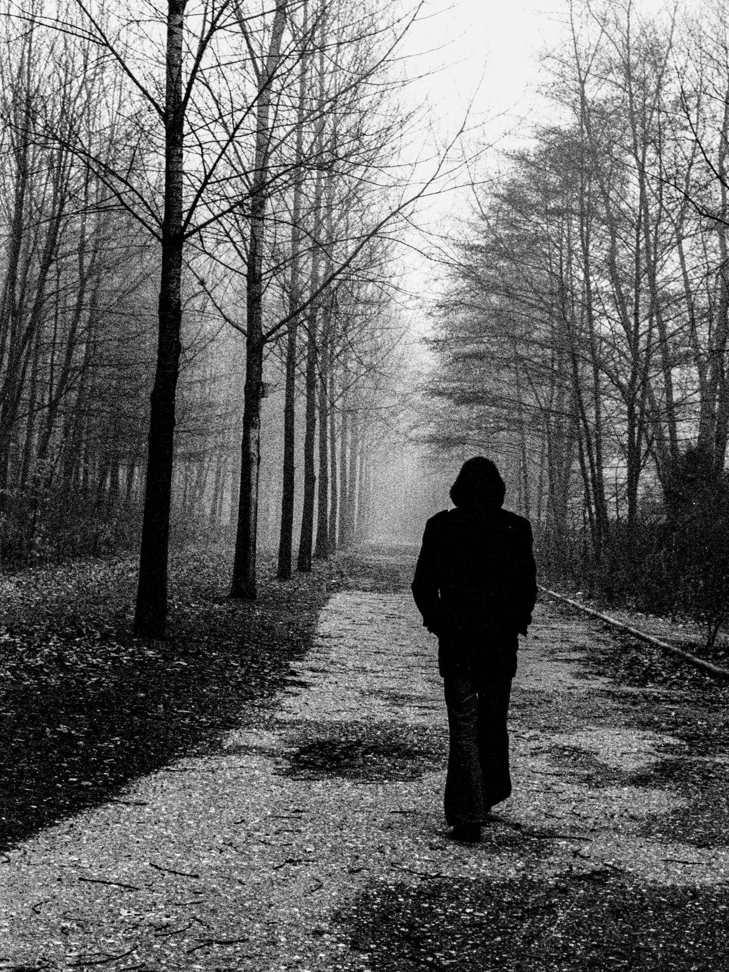 Entdecken Sie die Schönheit der Melancholie